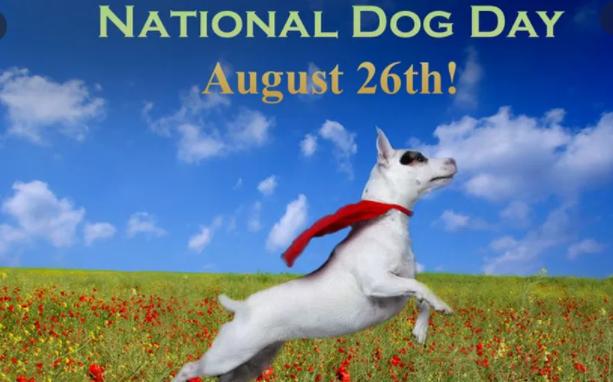National Dog Day 2021 USA