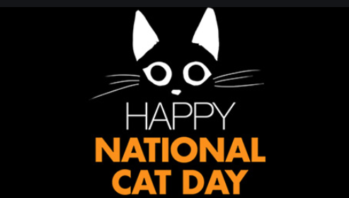 Happy National Cat Day 2021