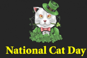 National Cat Day Image